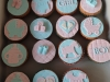 boy-or-girl-cupcakes-1